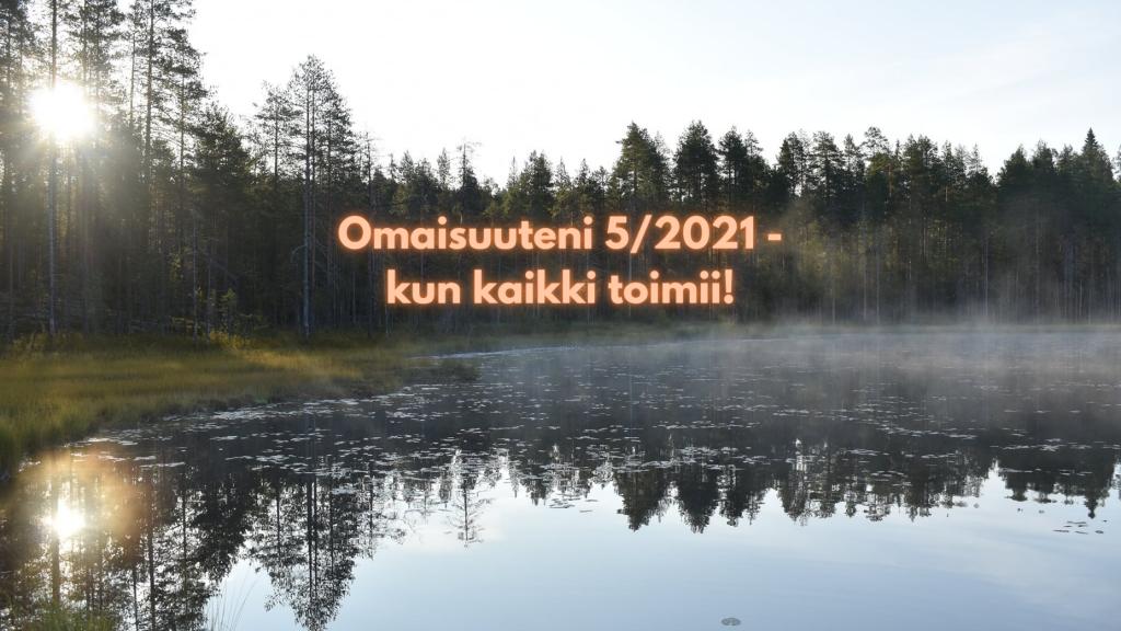 Omaisuuteni 5/2021 - kun kaikki toimii!